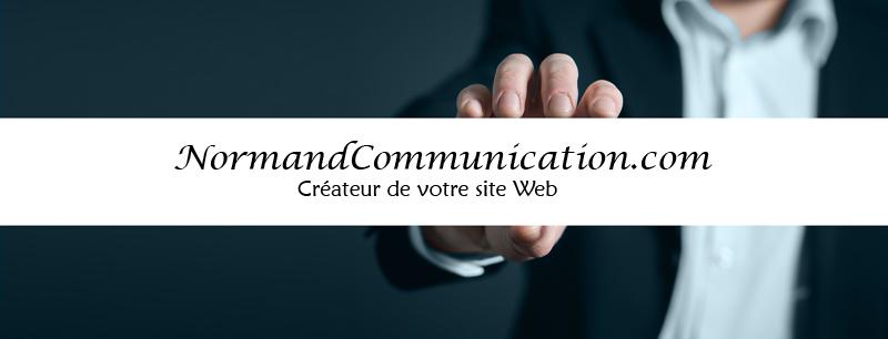 web internet concepteur