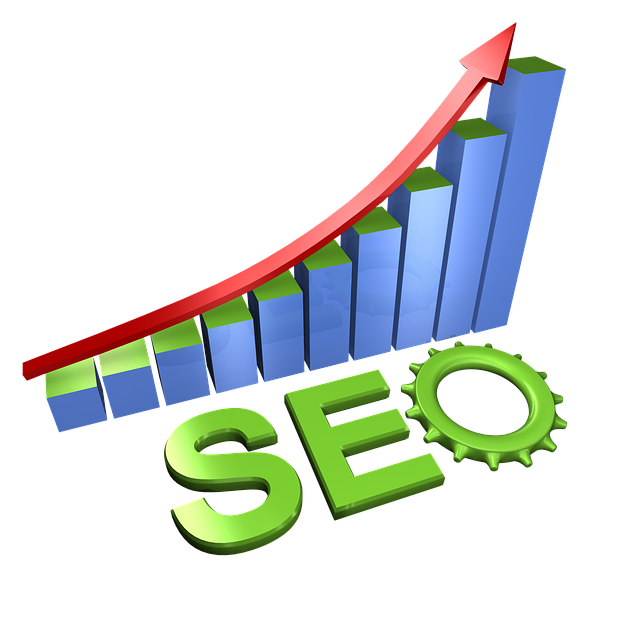 seo internet web